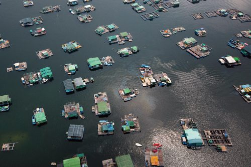 fig. 2.13:  China contributes 60 per cent of the global aquaculture production. Aquaculture installations such as the one shown here in Tolo Harbour near Hong Kong can be found in many of China's coastal regions. © Yann Arthus-Bertrand/Getty Images