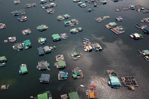 Abb. 2.13: China trägt 60 Prozent zur weltweiten Aquakulturproduktion bei. Entsprechend findet man in vielen chinesischen Küstenregionen Aquakulturanlagen wie diese im Hafen von Tolo nahe bei Hongkong. © Yann Arthus-Bertrand/Getty Images