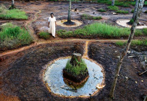 Abb. 2.47: In der Gemeinde Panmana im indischen Bundesstaat Kerala sind die Böden vielerorts durch Schwermetalle verseucht. Pflanzen wachsen hier kaum noch. © Photo by India Today Group