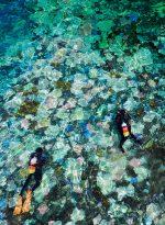 Abb. 3.8: In Japans größtem Korallenriff, dem 400 Quadratkilometer großen Sekiseishoko-Riff, sind nach Messungen mehr als 70 Prozent der Korallen von der Bleiche betroffen. © Kyodo News/action press
