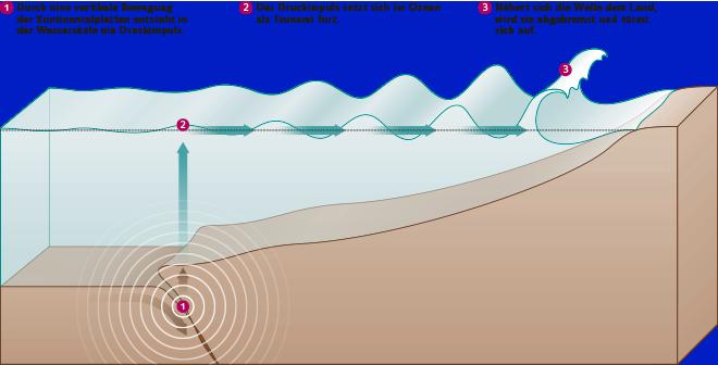 Abb. 3.22: Tsunamis entstehen oftmals, wenn sich bei Erdbeben Kontinentalplatten im Meer nach oben oder unten bewegen. © maribus