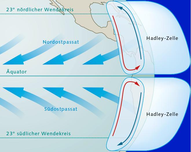 Abb. 3.31: Die Hadley-Zirkulation ist eine Luftströmungswalze, die in den Tropen wirkt und Luft zwischen dem Äquator und den Wendekreisen bewegt. © maribus