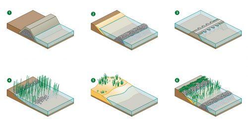 Abb. 4.25: Neben klassischen Küstenschutzmethoden wie Deichen(1), Wellenbrechern (2) und Sperrwerken in Flussmündungen(3) werden heute zunehmend ökosystembasierte Maßnahmen umgesetzt. Dazu zählen die Schaffung künstlich angelegter Marschen(4), in denen sich frisches Sediment sammelt, Sandaufspülungen (5), durch die sich entlang der Küste Sände und Dünen bilden, sowie die Errichtung naturnaher Küstenlinien(6), bei denen sich hinter Strukturen, die als Wellenbrecher dienen, artenreiche Grüngürtel entwickeln. © maribus