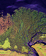The myriad faces of the coasts © Image provided by the USGS EROS Data Center Satel- lite Systems Branch. This image is part of the ongoing Landsat Earth as Art series/NASA