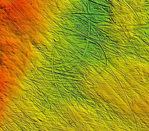 fig. 1.15 © Kelly Hogan/Britisch Antarctic Survey