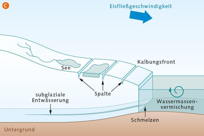 Abb. 3.42 © nach Bell et al.
